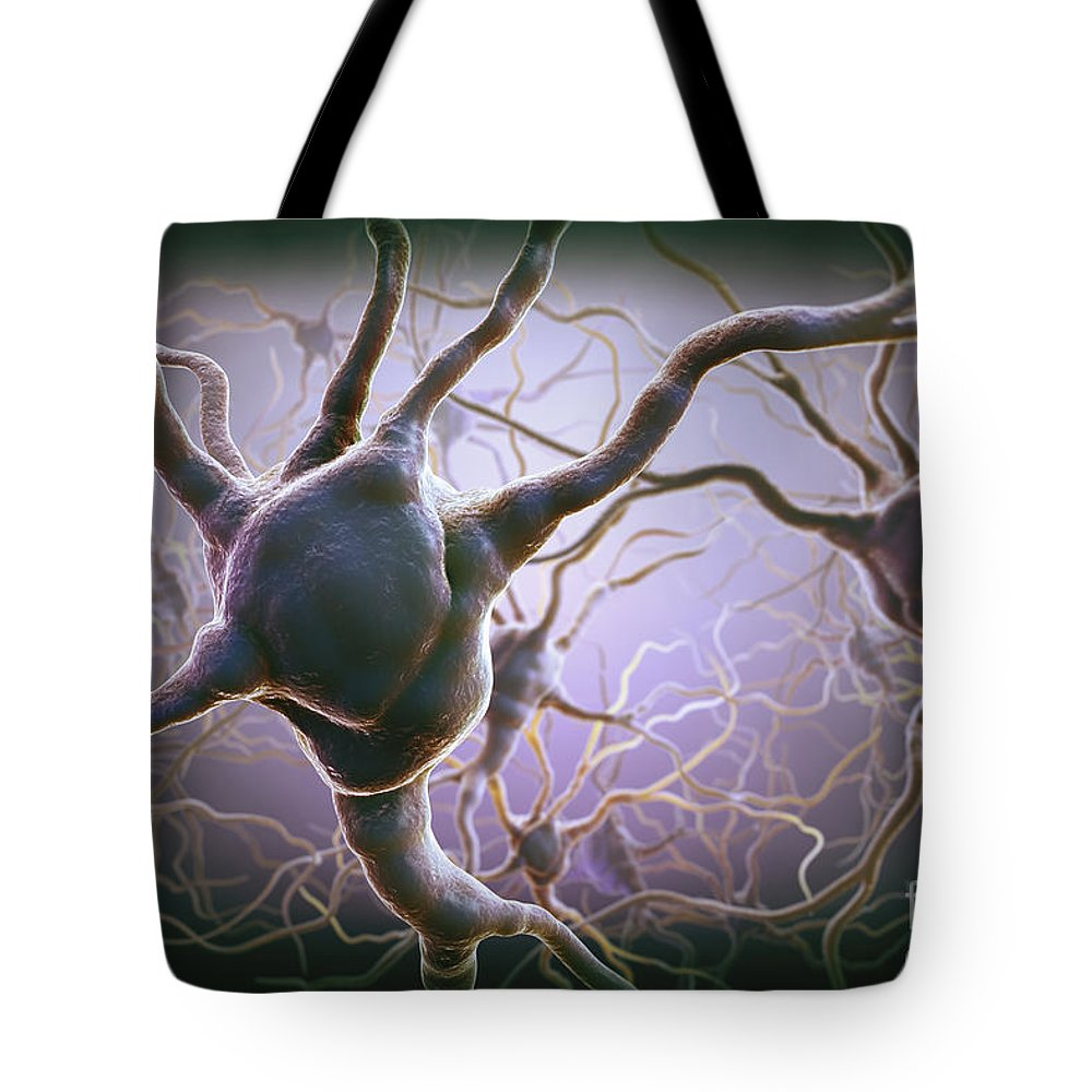 Anatomical Model Tote Bag featuring the photograph Neuron by Science Picture Co