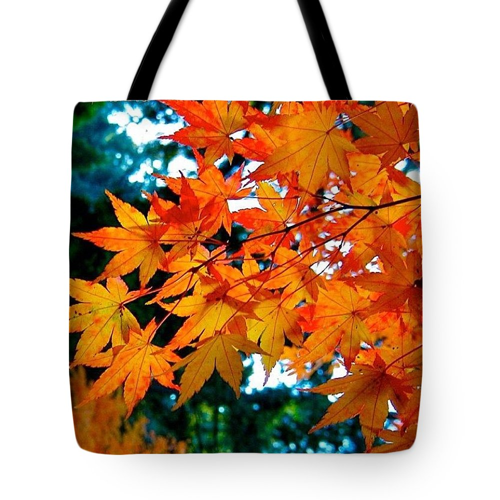 Orange Maple Leaves Tote Bag featuring the photograph Orange Maple Leaves by Anna Porter