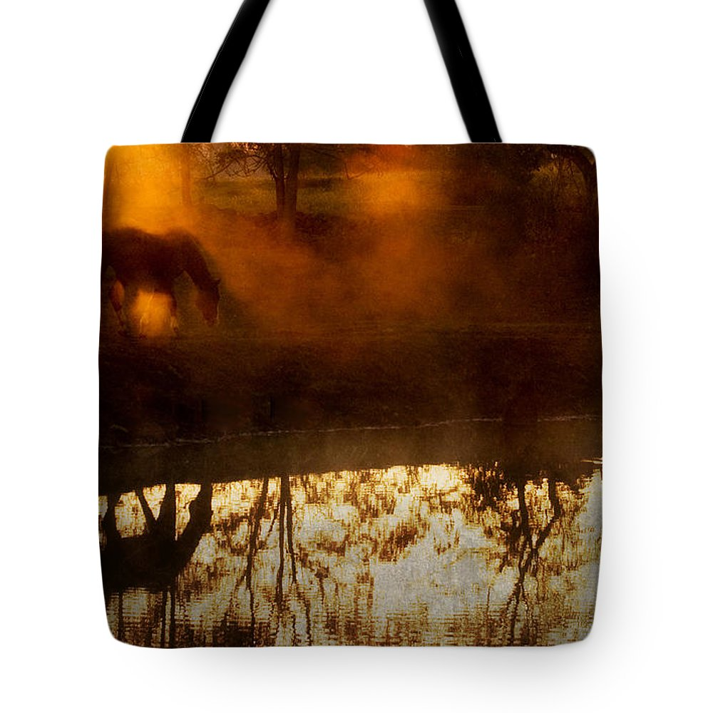 Joan Davis Tote Bag featuring the photograph Orange Mist by Joan Davis