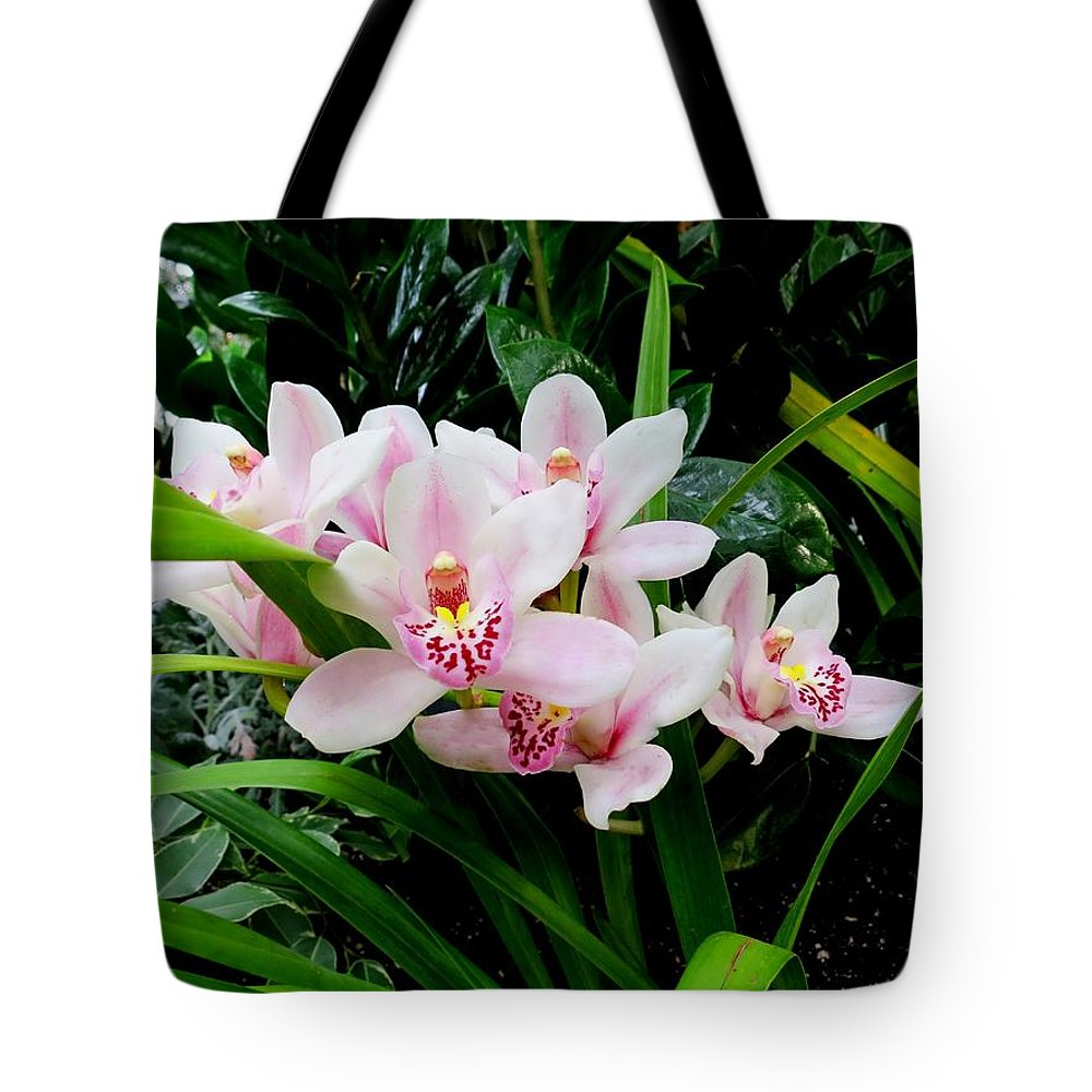 Orchid Tote Bag featuring the photograph Orchid by Lena Photo Art
