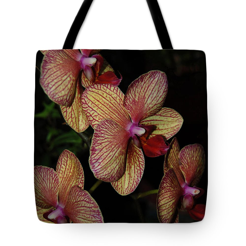 Orchid Tote Bag featuring the photograph Orchid Quad by Suzanne Gaff