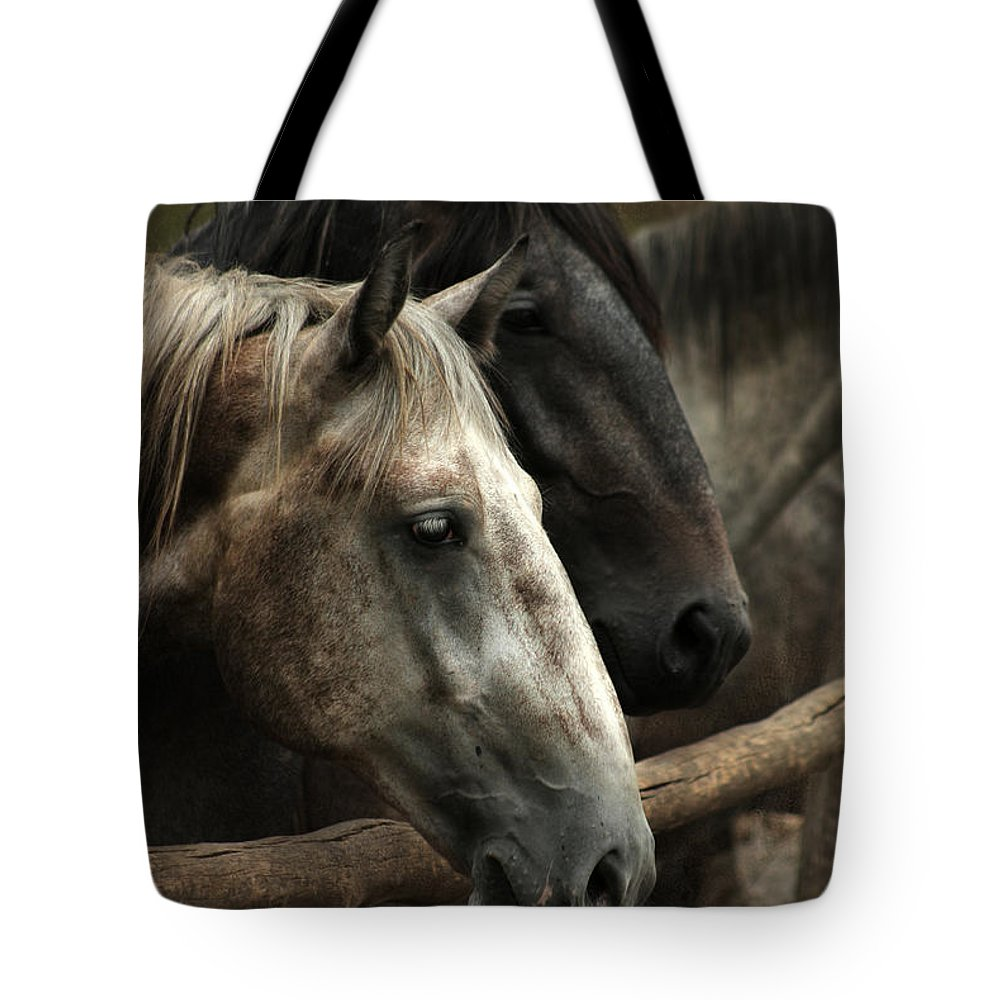 Horse Tote Bag featuring the photograph Over The Fence by Angel Ciesniarska