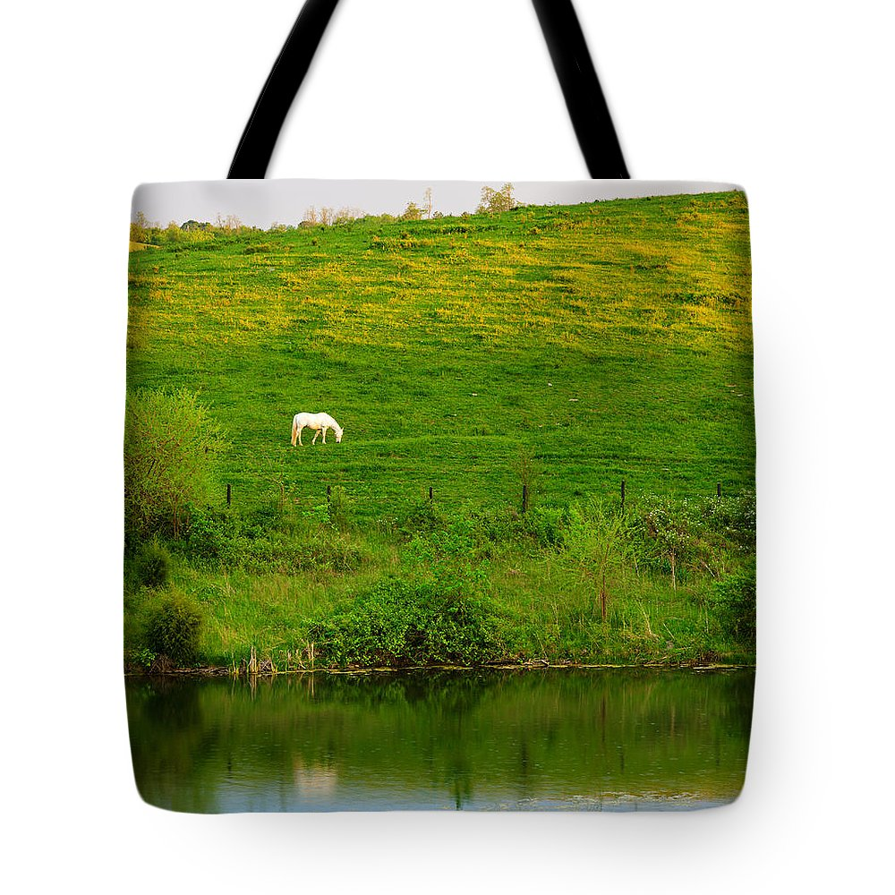 Horse Tote Bag featuring the photograph Pasture by Alexey Stiop
