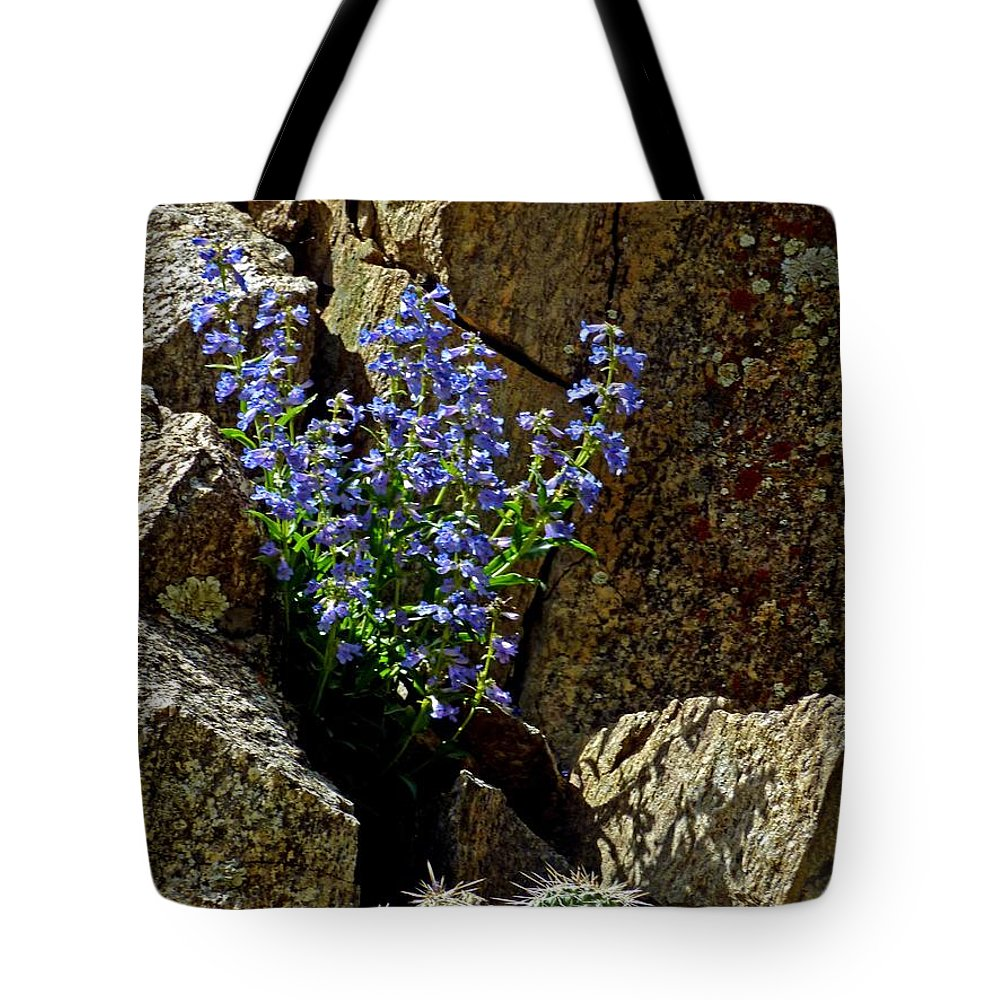 Wildflower Photography Tote Bag featuring the photograph Persistence by George Tuffy