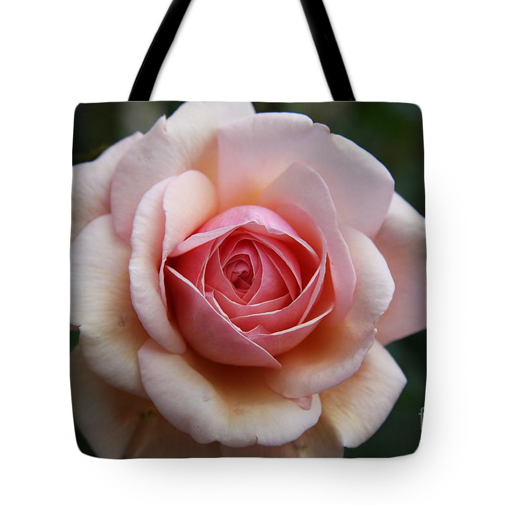 Rose Tote Bag featuring the photograph Pure Beauty by Christiane Schulze Art And Photography
