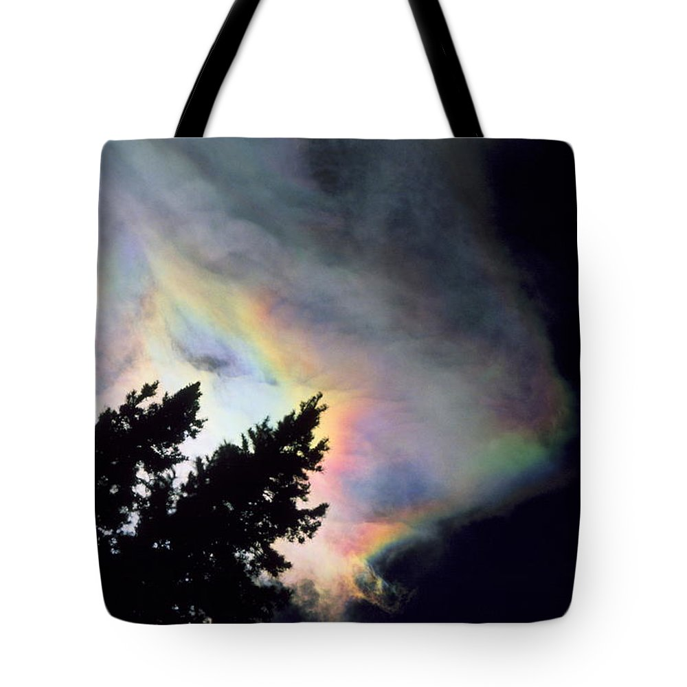 Rainbowcloud Winter Tree Nature Colorado Rocky Mountains Zen Simple Tote Bag featuring the photograph Rainbow Cloud by George Tuffy