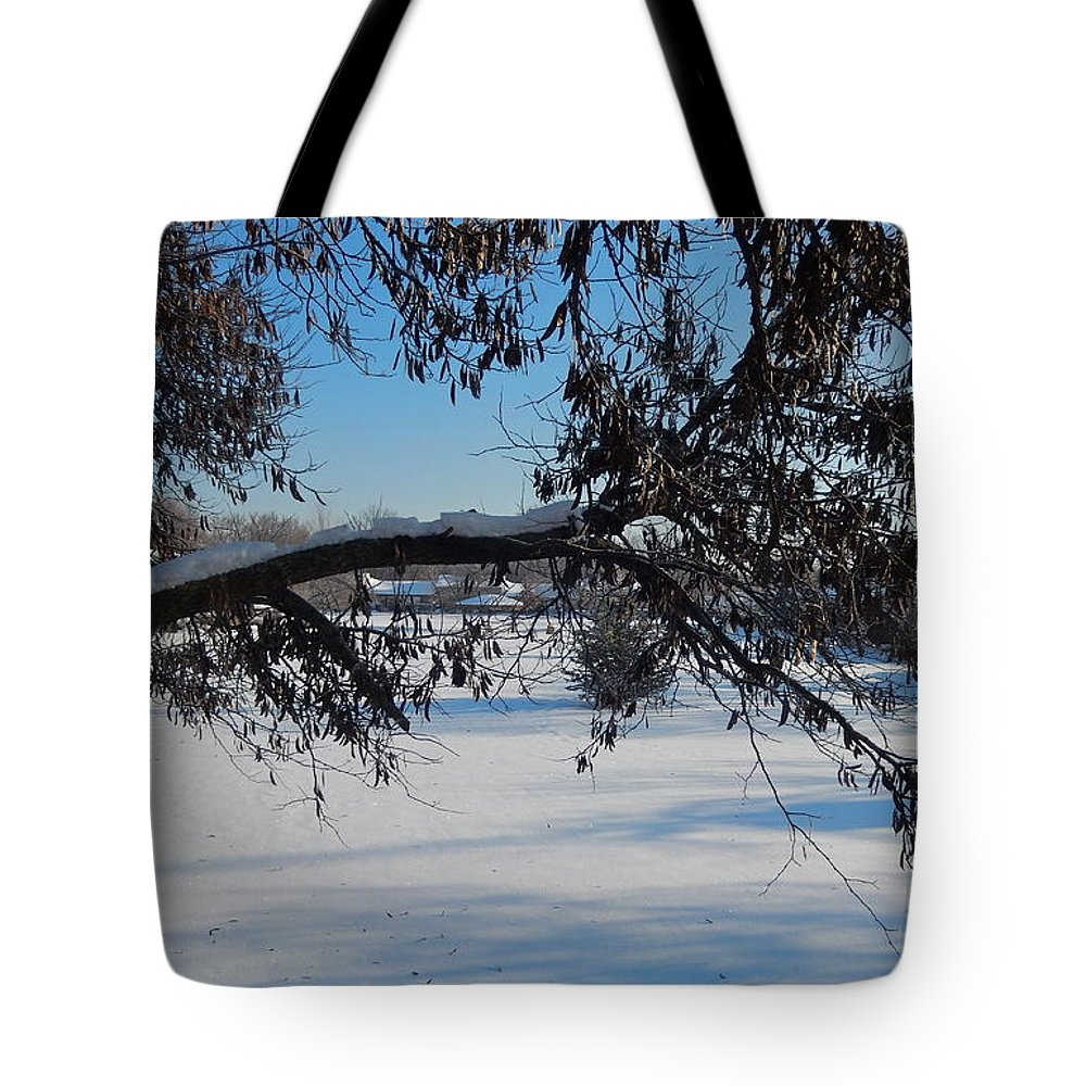 Redbud Tree Tote Bag featuring the photograph Redbud Tree In Winter by Susan Wyman