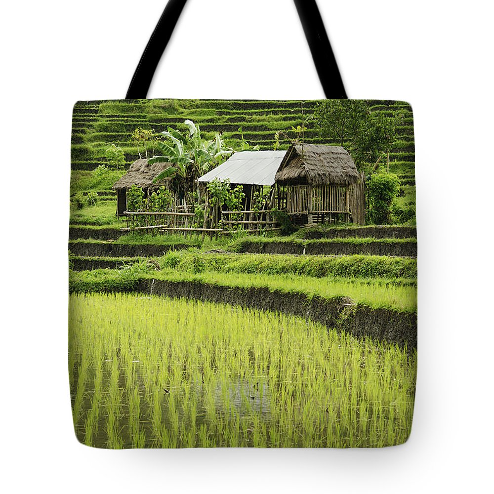 Agriculture Tote Bag featuring the photograph Rice Fields In Bali Indonesia by Jacek Malipan