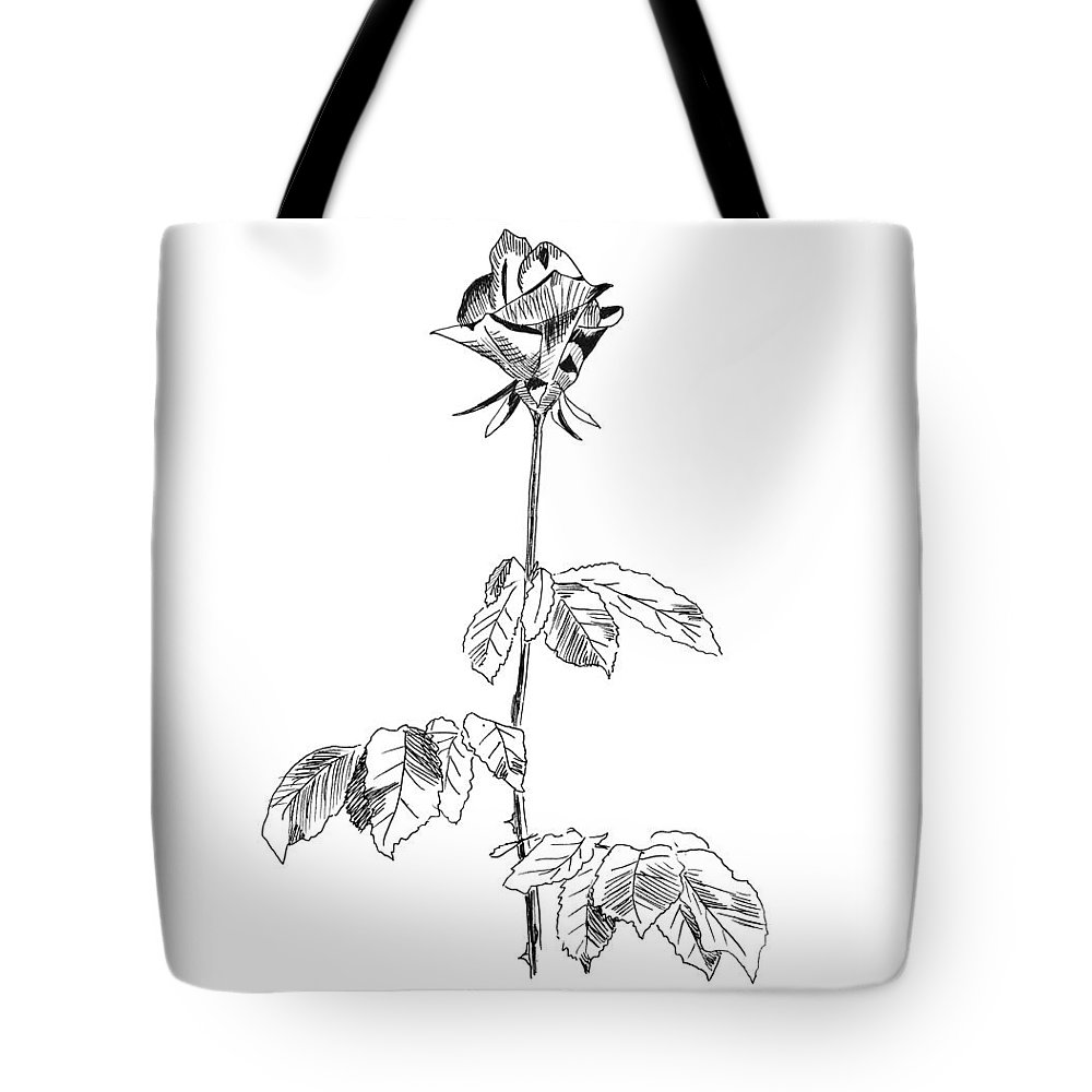 Rose Tote Bag featuring the drawing Rose by Masha Batkova