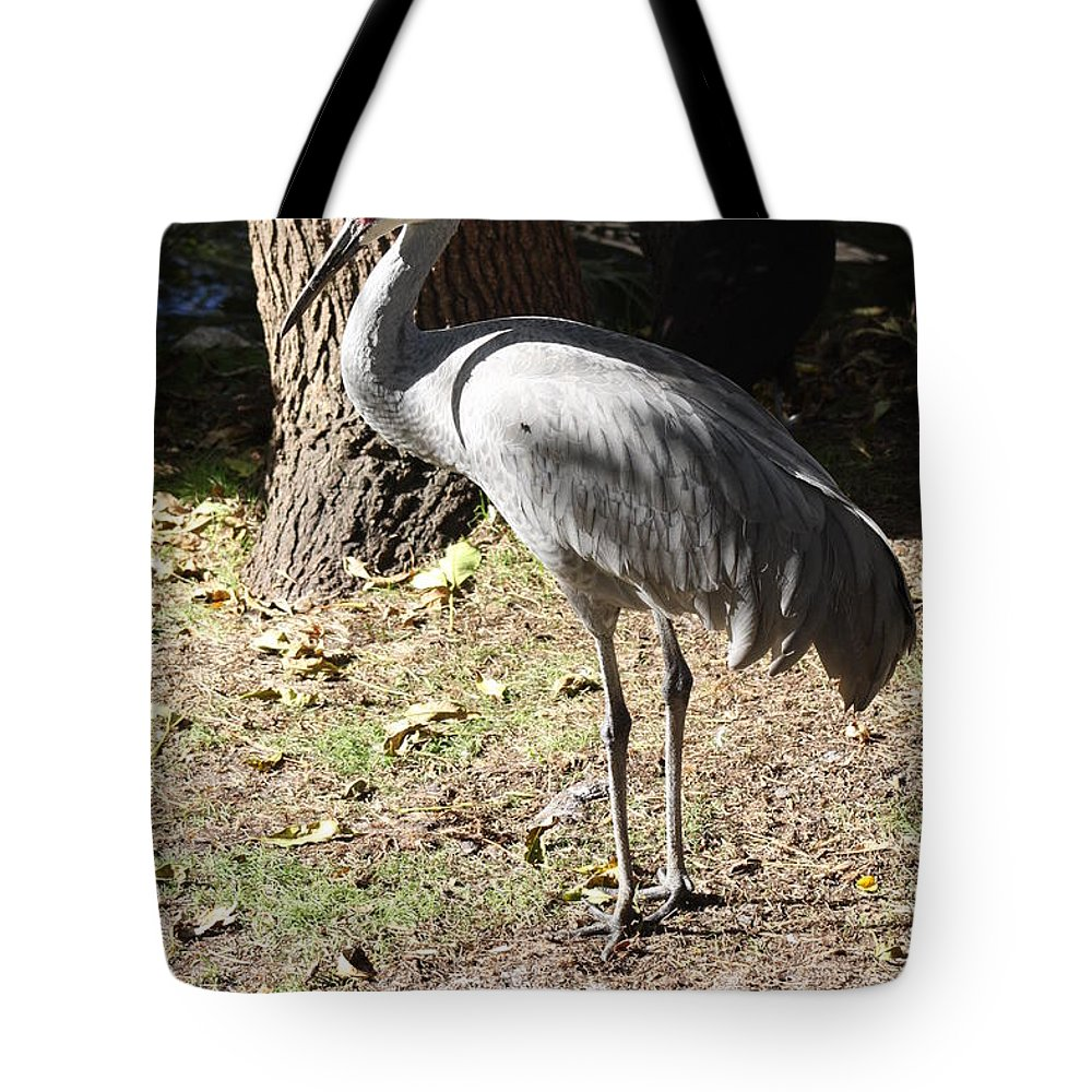 Sandhill Crane Tote Bag featuring the photograph Sandhill Crane by Christiane Schulze Art And Photography