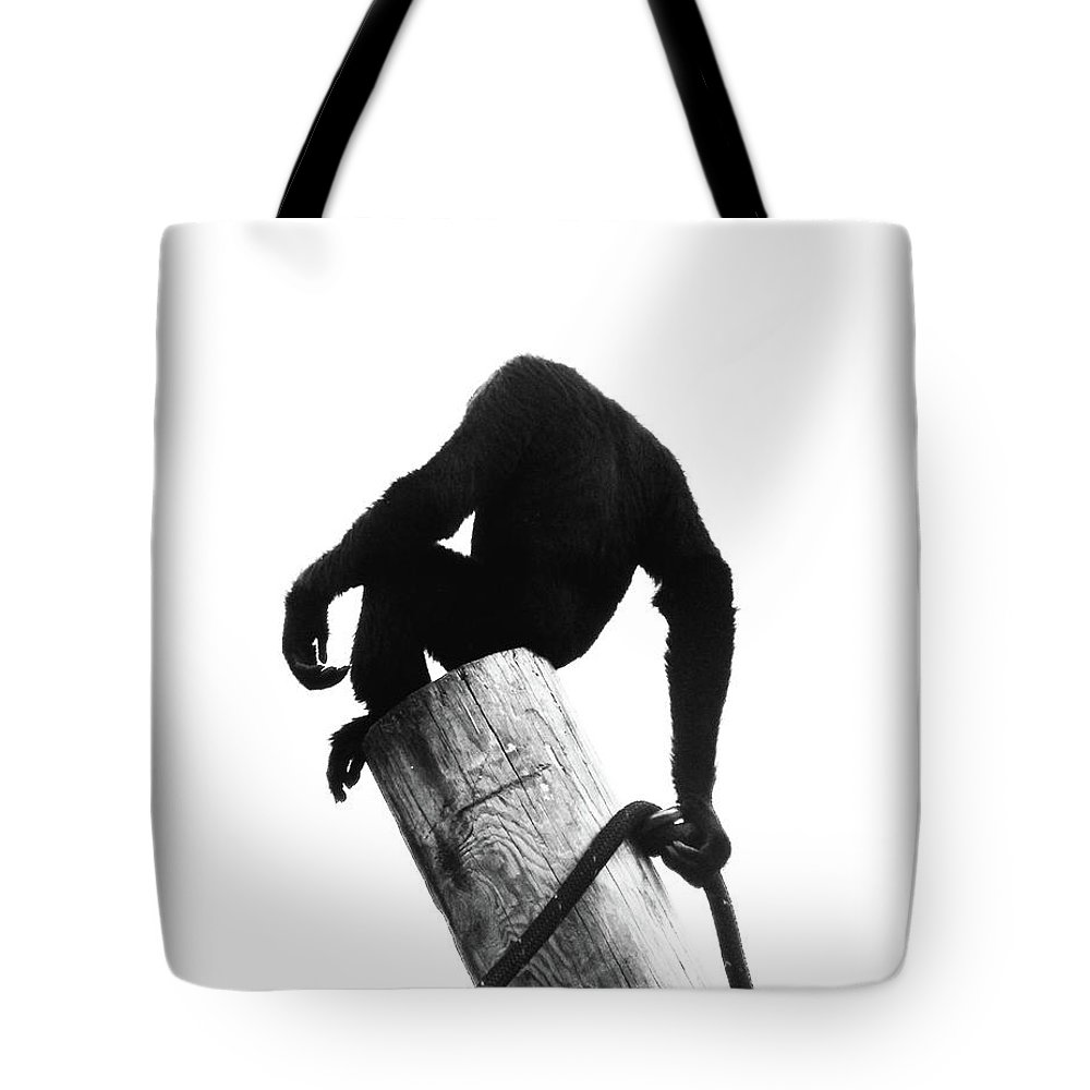 Ape Tote Bag featuring the photograph Simang by Lizi Beard-Ward