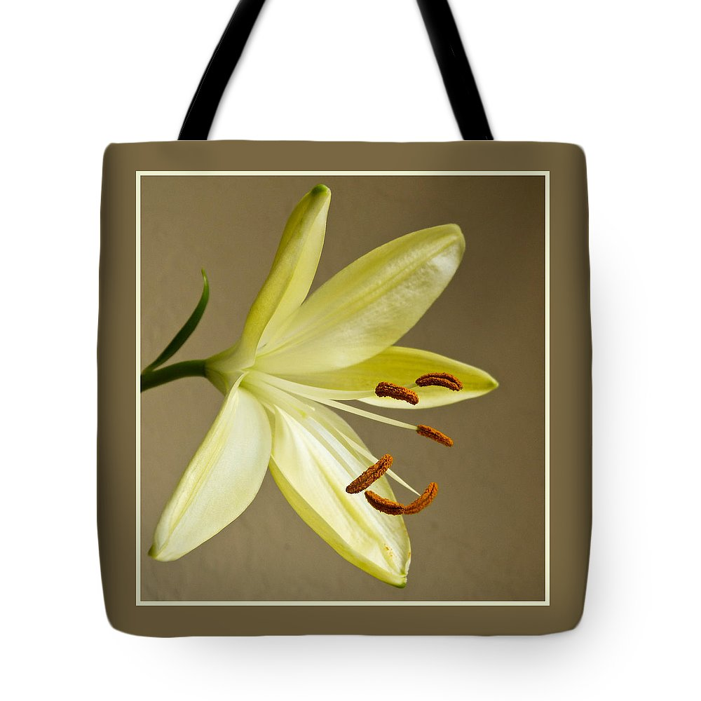 Lily Tote Bag featuring the photograph Simple Lily by Geraldine Alexander