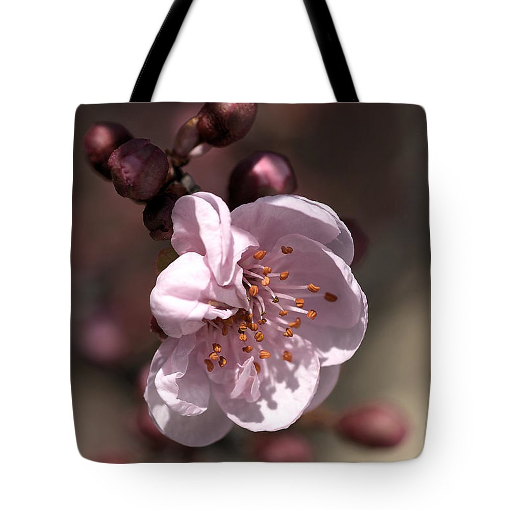 Spring Blossom Tote Bag featuring the photograph Spring Blossom by Joy Watson