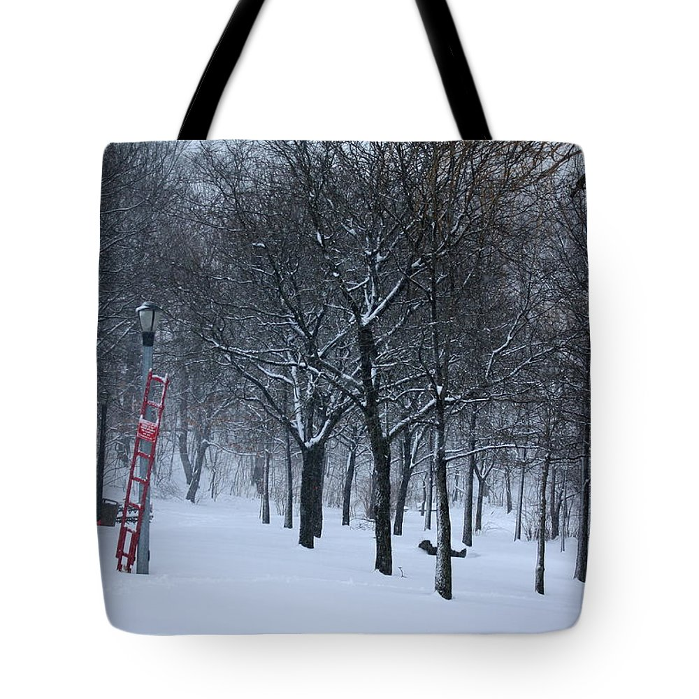 Winter Tote Bag featuring the photograph Stormy Weather by Dora Sofia Caputo Photographic Design and Fine Art