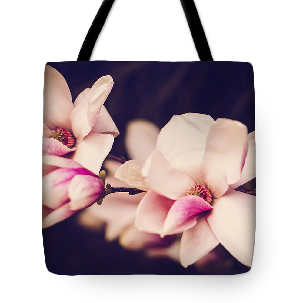 Magnolias Tote Bag featuring the photograph Sweet Magnolia by Sara Frank