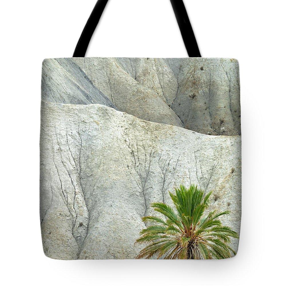 Desert Tote Bag featuring the photograph Tabernas Desert by Guido Montanes Castillo