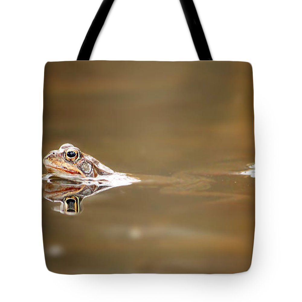 Toad Tote Bag featuring the photograph Toads by Heike Hultsch