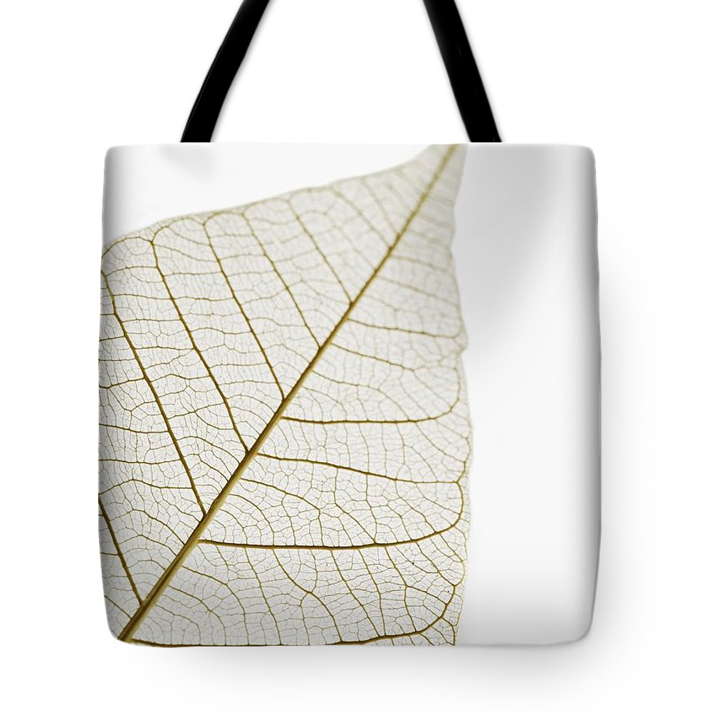 Close Up Tote Bag featuring the photograph Transparent Leaf by Kelly Redinger