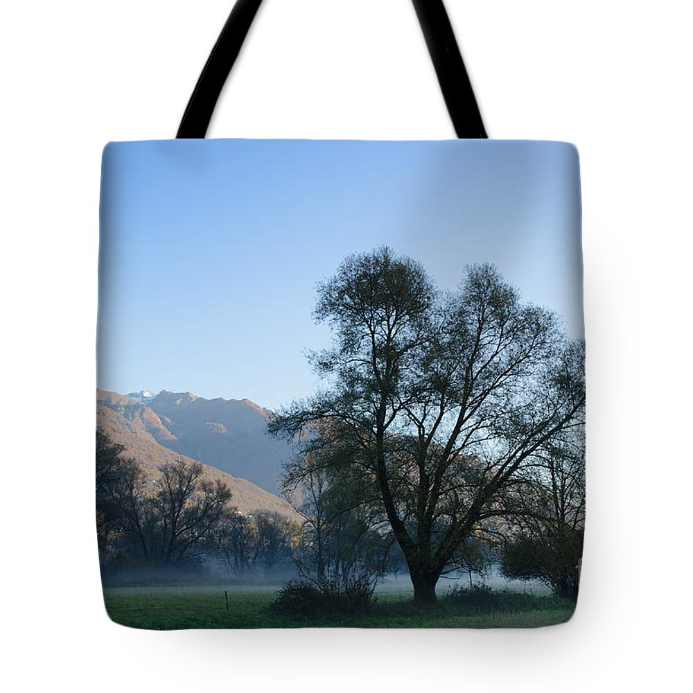 Trees Tote Bag featuring the photograph Tree And Mountain by Mats Silvan