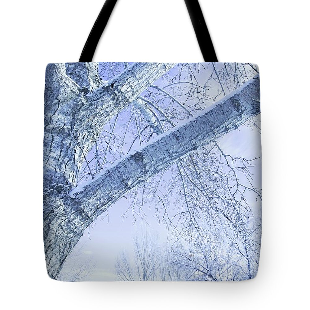 Bark Tote Bag featuring the photograph Trees In Winter by Don Hammond