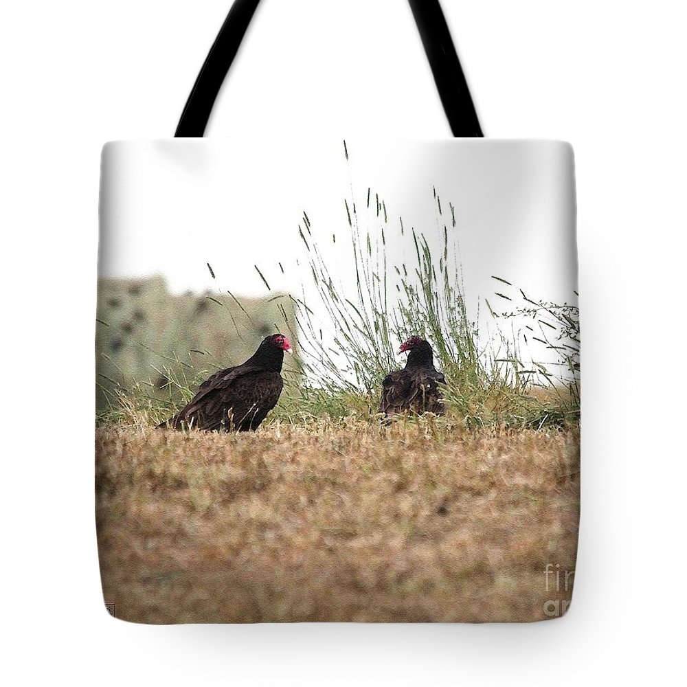 Mccombie Tote Bag featuring the painting Turkey Vultures by J McCombie