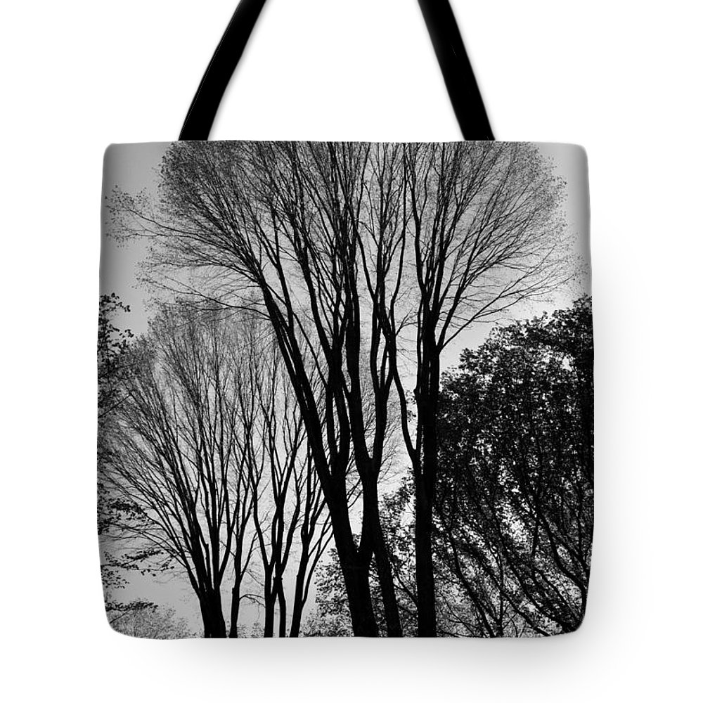 Africa Tote Bag featuring the photograph Untitled by Kathleen Odenthal