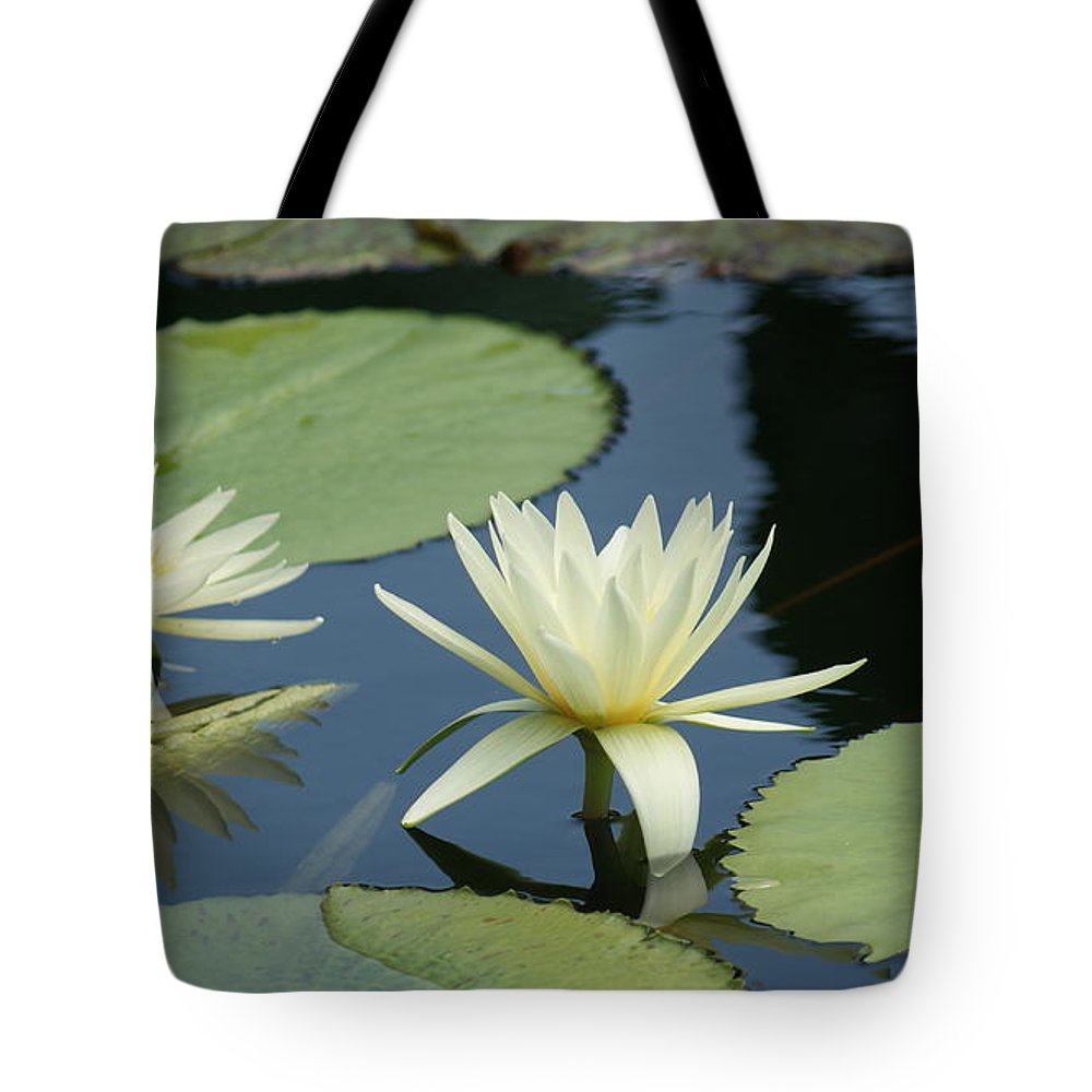 White Tote Bag featuring the photograph 2 Waterlilys Rising Above The Water by Rob Luzier