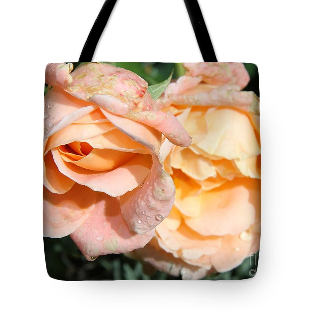 Pink Rose Tote Bag featuring the photograph Wet Beauty by Christiane Schulze Art And Photography