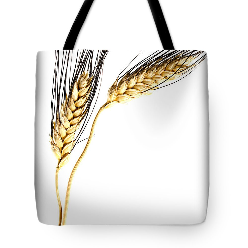 Wheat Tote Bag featuring the photograph Wheat On White by Carol Leigh