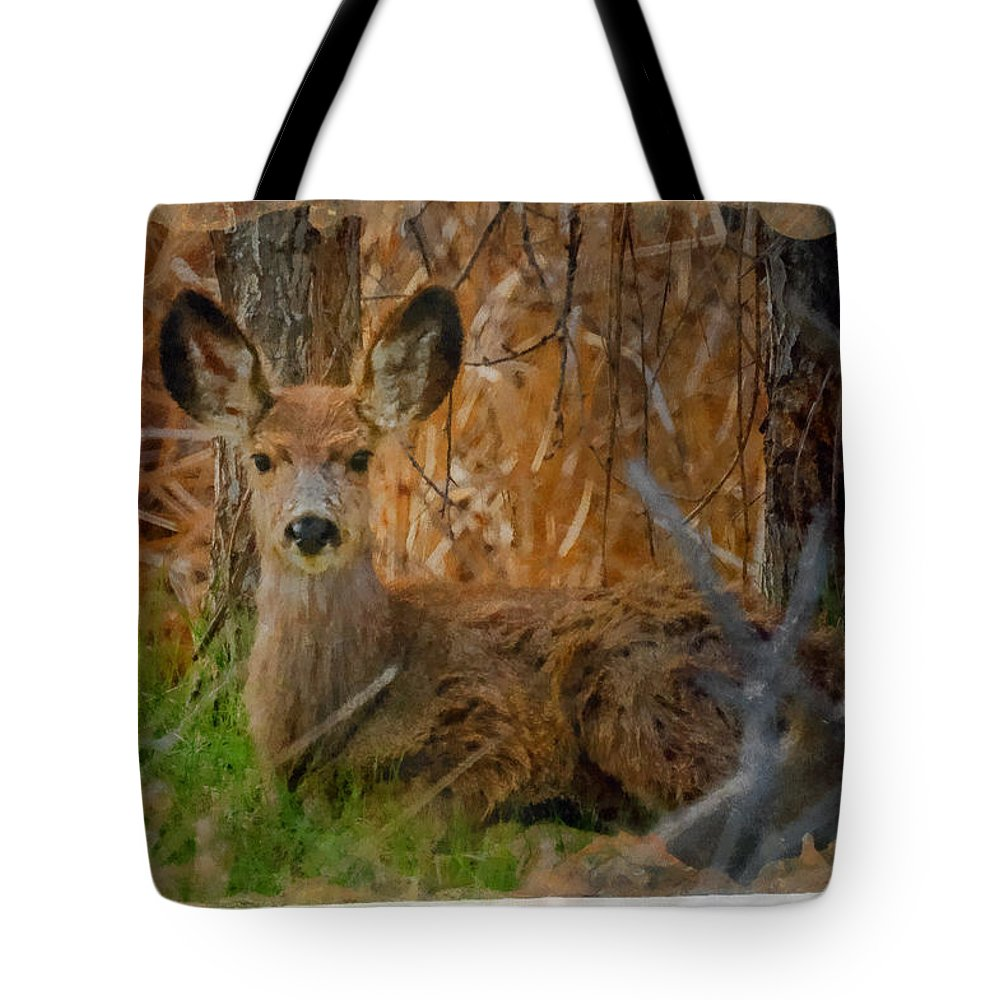 Big Ears Tote Bag featuring the digital art Young Mulie by Ernie Echols