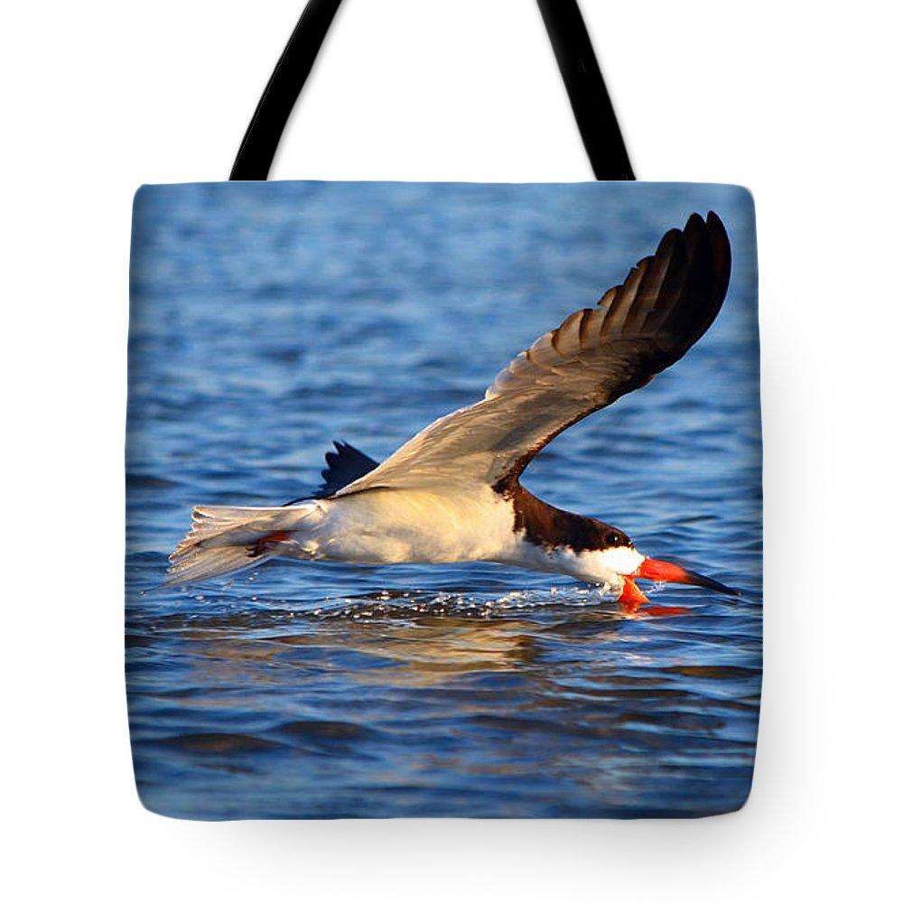 Canvas Tote Bag featuring the photograph 2013 05 25 01 E 0446 by Mark Olshefski