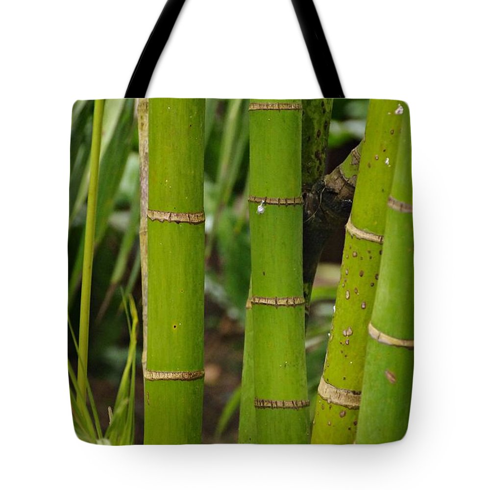 Nature Tote Bag featuring the photograph Bamboo by Gabi Siebenhuehner