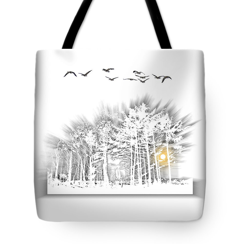 Birds Tote Bag featuring the photograph 2503 by Peter Holme III