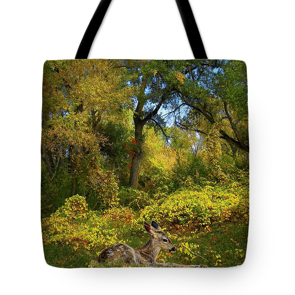 Deer Tote Bag featuring the photograph 2672 by Peter Holme III