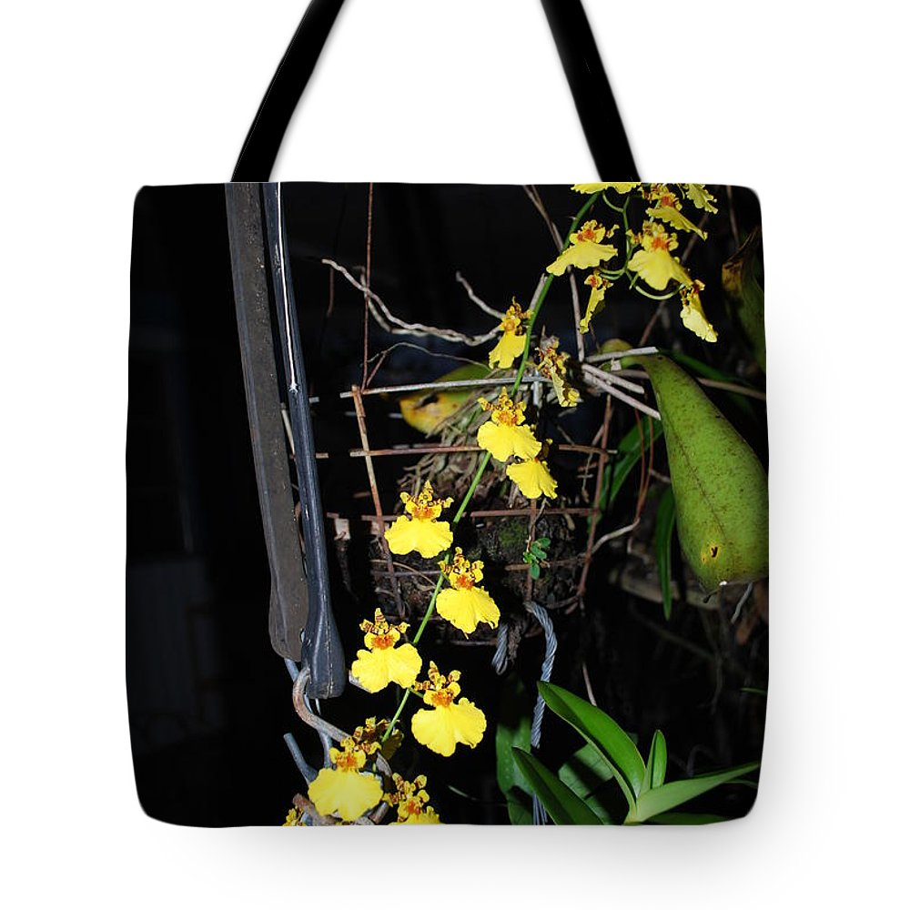 Dancing Lady Tote Bag featuring the photograph Orchid by Robert Floyd