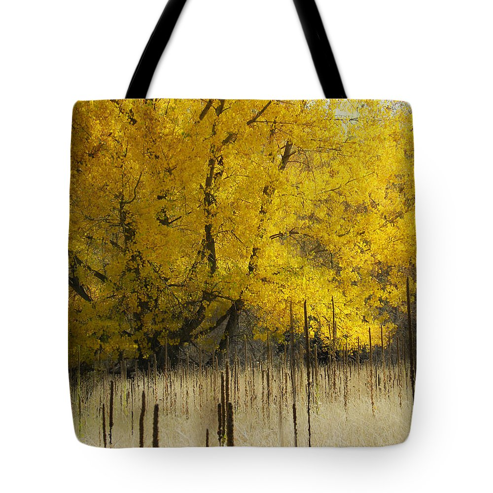 Autumn Tote Bag featuring the photograph 2804 by Peter Holme III