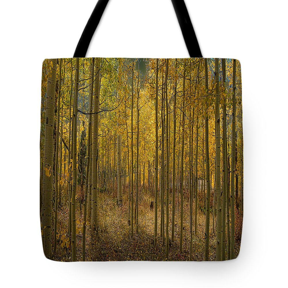 Aspen Tote Bag featuring the photograph 2811 by Peter Holme III