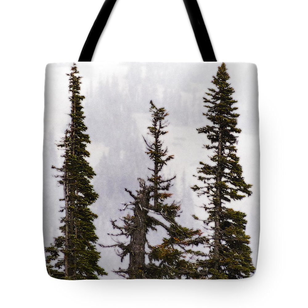 Washington State Tote Bag featuring the photograph 3 Amigos by Greg Reed