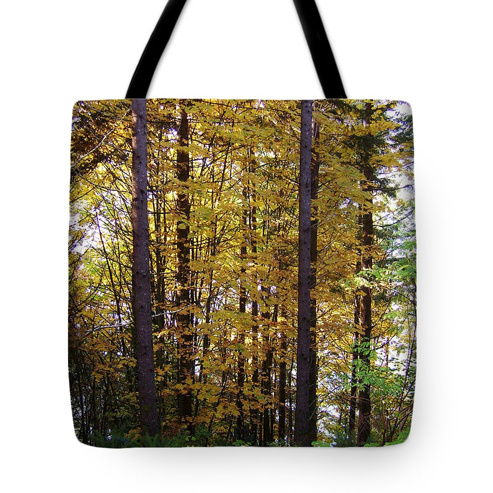 Original Tote Bag featuring the photograph Autumn 5 by J D Owen