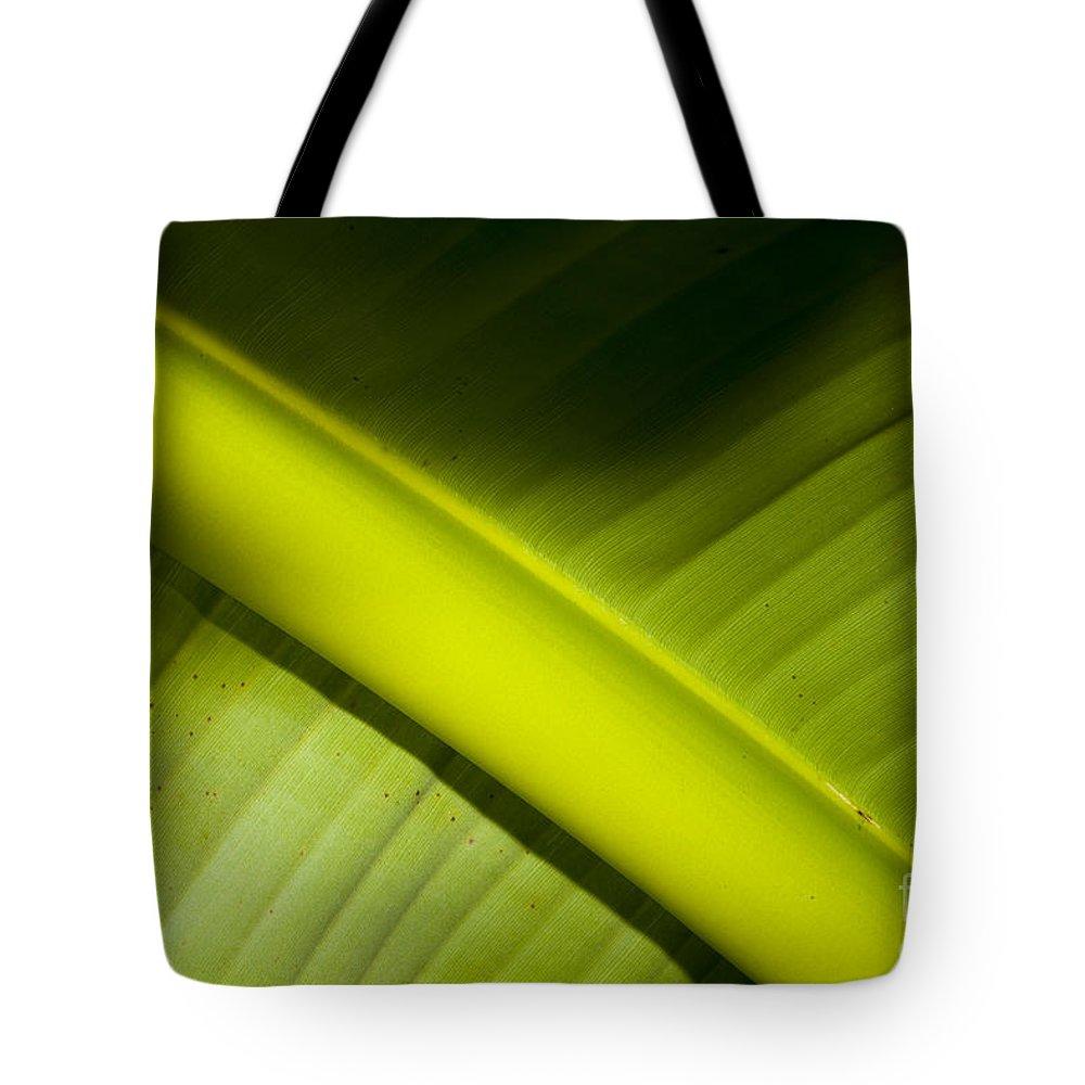 Banana Leaf Tote Bag featuring the photograph Banana Leaf by Mats Silvan