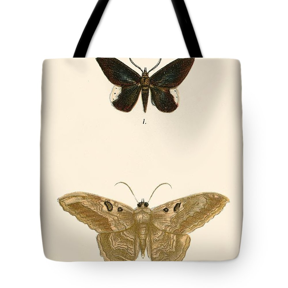 Butterfly Wings Tote Bags