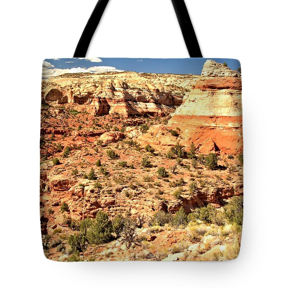 Calf Creek Falls Tote Bag featuring the photograph Calf Creek Falls Canyon by Adam Jewell