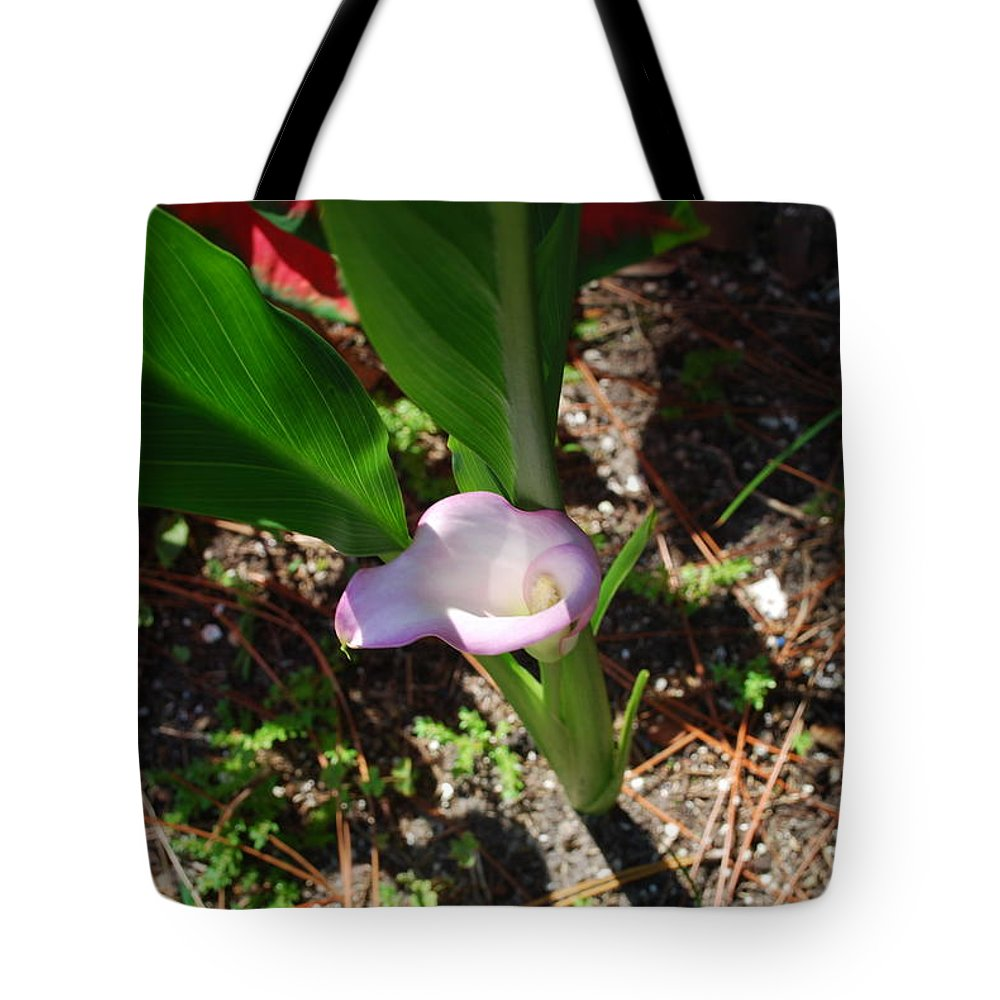 Grown In My Yard Tote Bag featuring the photograph Canna Lily by Robert Floyd
