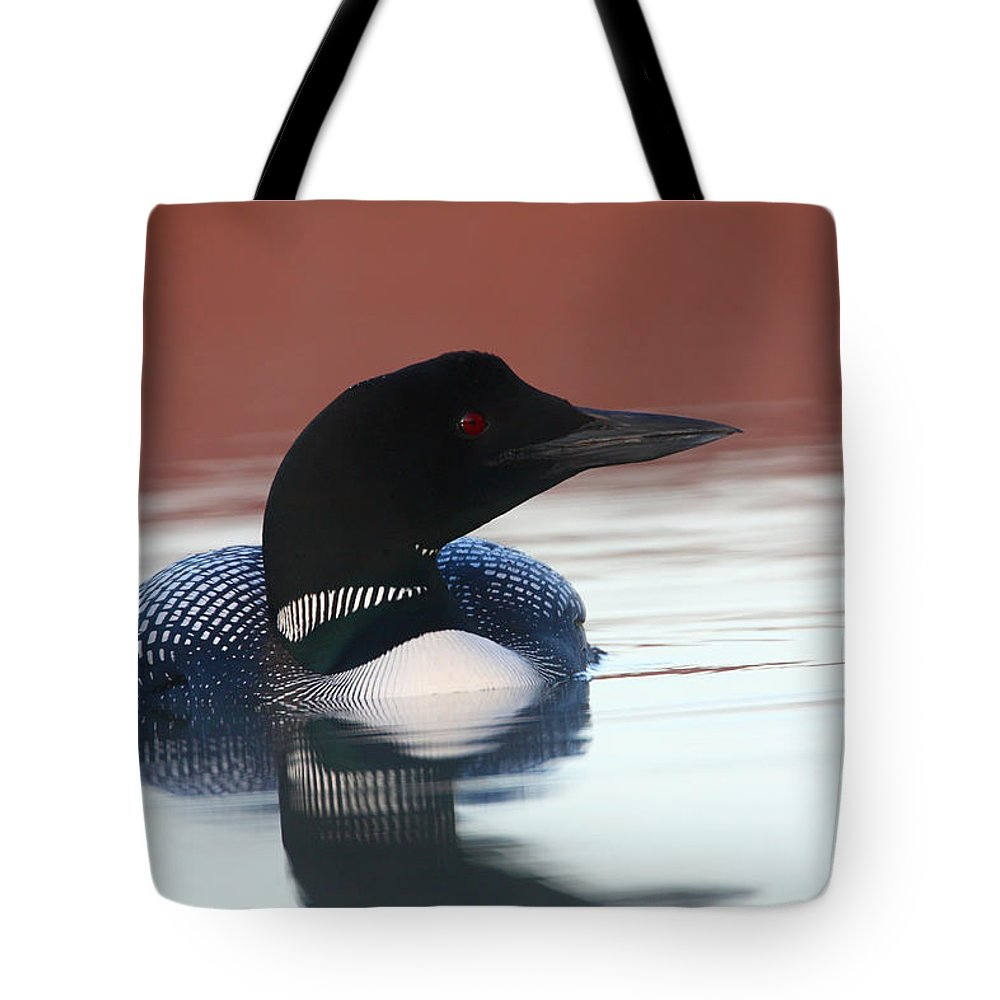 Doug Lloyd Tote Bag featuring the photograph Common Loon by Doug Lloyd