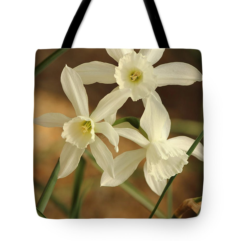 Daffodils Tote Bag featuring the photograph 3 Daffodils by Karen Beasley