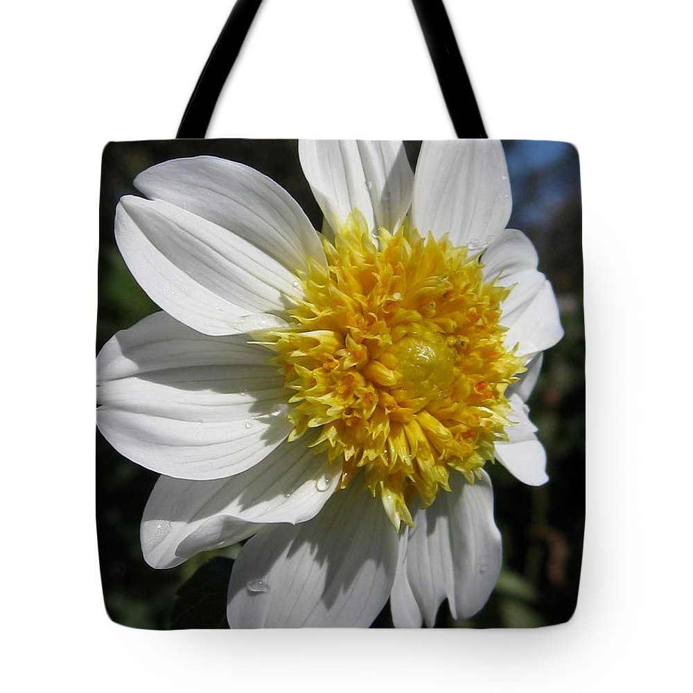 Mccombie Tote Bag featuring the photograph Dahlia Named Platinum Blonde by J McCombie