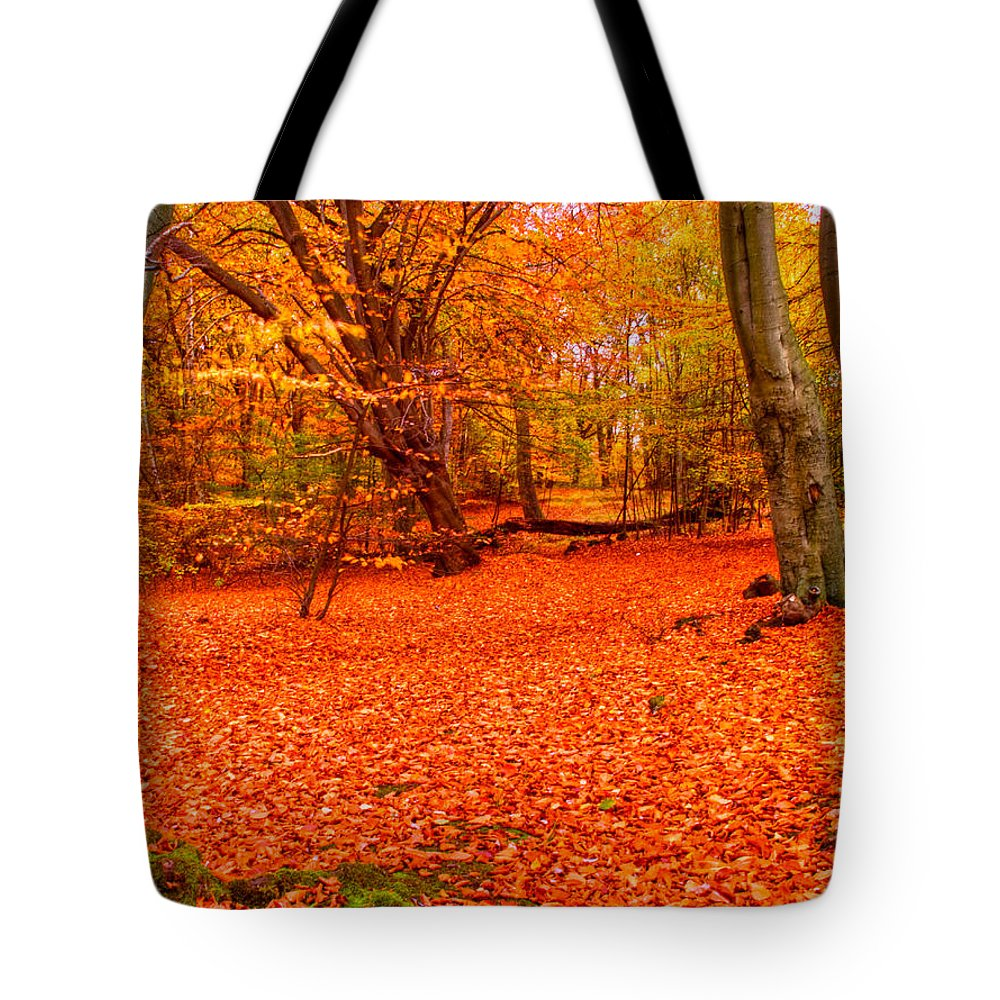 Epping Forest Tote Bag featuring the photograph Epping Forest Hrd Version by David French