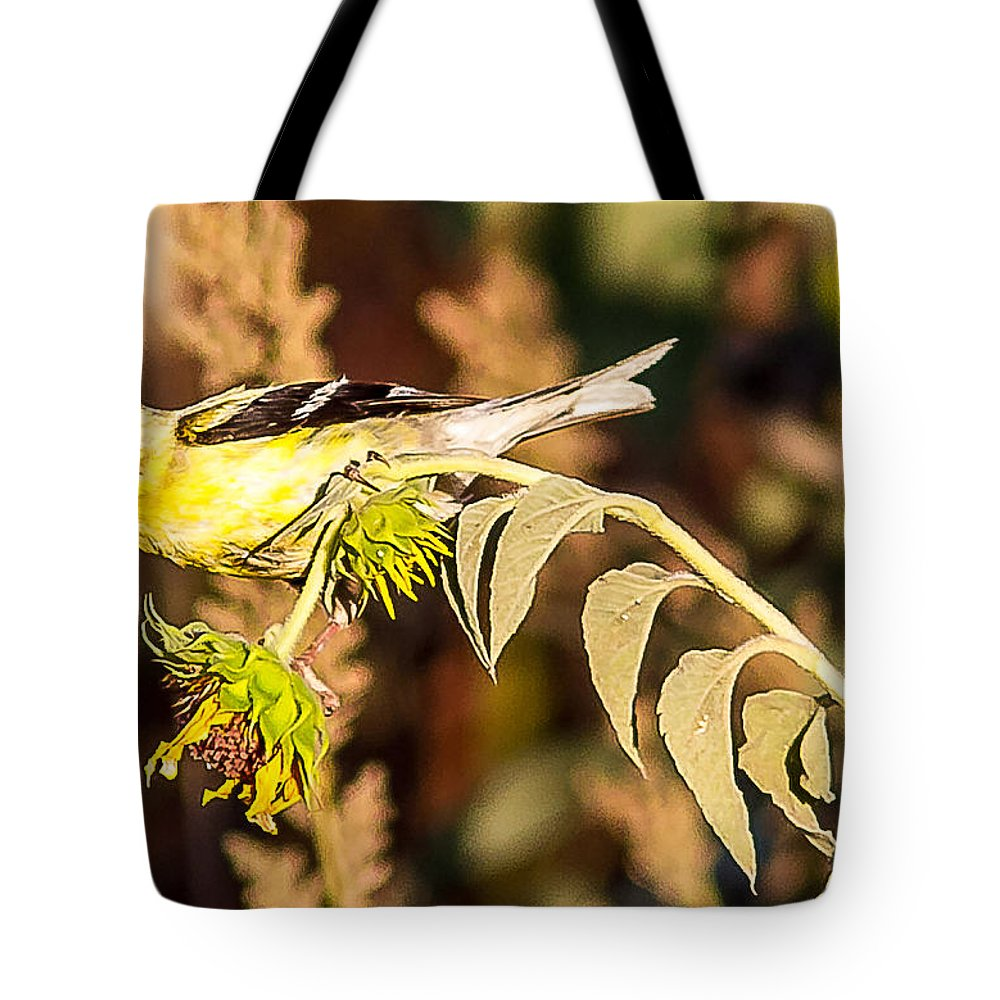 Gold Finch Outdoors Wildlife Nature Small Birds All Prints Are Available In Prints Tote Bag featuring the photograph Gold Finch by Brian Williamson