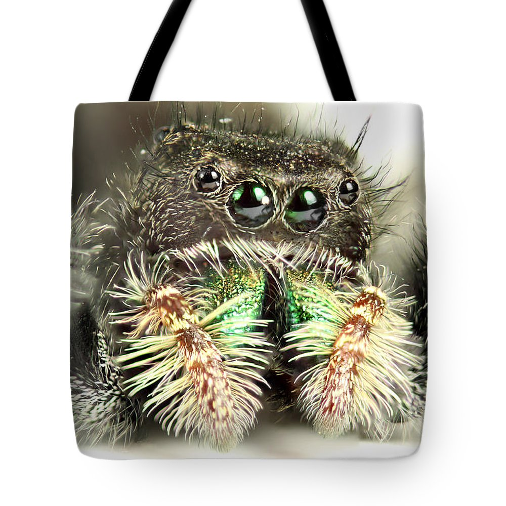 Spider Tote Bag featuring the photograph Jumping Spider by Paul Fell