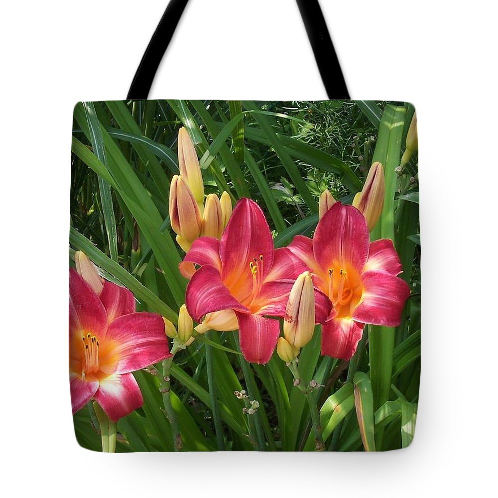 Pink Tote Bag featuring the photograph Three Lilies In A Row by Catherine Gagne